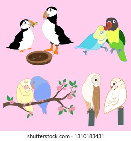 Set of cartoon bird couples vector owls, budgies, puffins, parrots cute illustrations