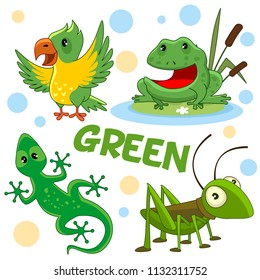 A set of cartoon birds and insects reptiles for children and green design. A grasshopper, a frog or a toad in the reeds, a colorful parrot and a half-lizard.