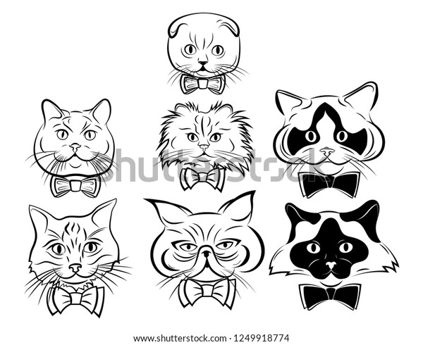 Set Cartoon Cats Face Collection Cute Stock Vector Royalty Free