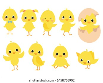Set of cartoon chicks. A collection of cute yellow chicks. Vector illustration of little chickens for children.