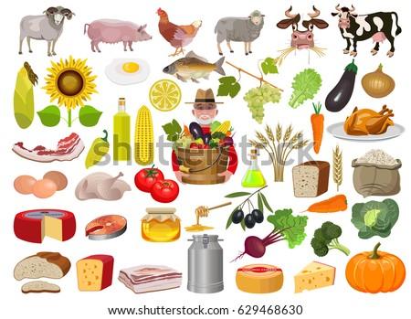 set cartoon food farm animals vector stock vector royalty free