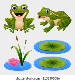 Set of cartoon frog and water lily