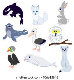 Set of cartoon funny arctic animals. Vector illustration. Albatross, fur-seal, hare, eider, ermine,owl, arctic fox, white whale, grampus.