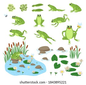 Set of cartoon hungry frog sad, smile, resting and hunting. Happy frog sit and jump clip art, different pose, with pond, plants, dragonfly.
