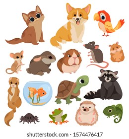 Set of cartoon pets. Collection of various domestic mammals, rodents, birds, reptiles. Vector illustration of animals for children. Drawing for children.