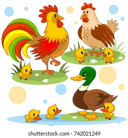 A set of cartoon pictures with animals for children with a rooster, chicken, chickens, duck and ducklings.
