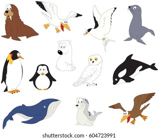 Set of cartoon polar animals for babies and little kids. Picture isolated on white background