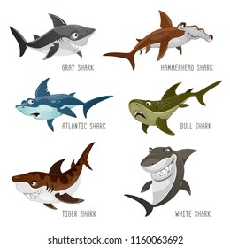 Set of cartoon sharks with different emotions isolated on white background. Vector illustration