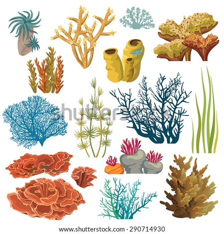 Set Cartoon Underwater Plants Creatures Vector Stock Vektorgrafik