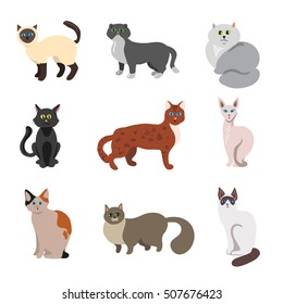 Set of cats or kittens with different color of feline fur. Collection domestic animals icons. Cute pets characters in cartoon style. Vector illustration isolated on white background.