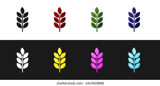 Set Cereals icon set with rice, wheat, corn, oats, rye, barley icon isolated on black and white background. Ears of wheat bread symbols. Agriculture wheat symbol. Vector Illustration