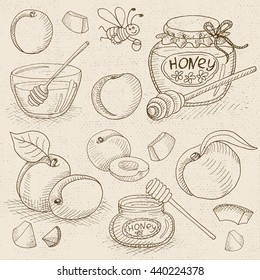 Set of chalk sketch hand drawn, in sketch style, food and spices, old paper textured background. Sweet Set with honey, peach, apricot, plum and funny bee. Hand drawn vector illustration.