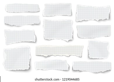 Set of checkered paper different shapes scraps isolated on white background. Vector paper template.