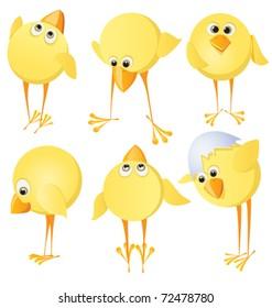 Set of chicks