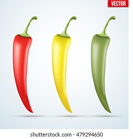 Set of chili peppers. Spicy red and yellow and green color. Vector Illustration isolated on white background.