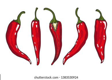 Set of Chilli pepper isolated on white. Vector illustration.