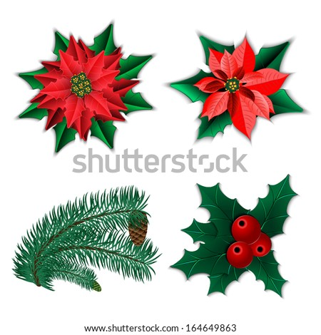 set of christmas decorations christmas flower poinsettia and holly and fir tree branch with - Christmas Flower Decorations