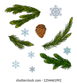 Set of Christmas and New Year decorations. Fir branches, cone and snowflakes isolated on white background. Vector illustration