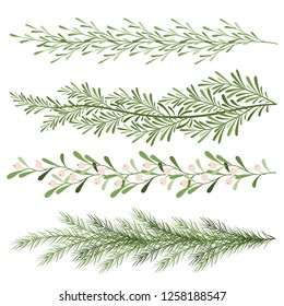 Set of christmas plants. Sprigs of mistletoe, coniferous branches. Long scenery. New year illustration on a white background