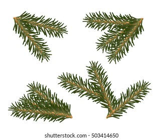 A set of Christmas tree branches