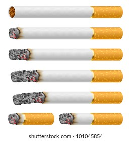 Set of Cigarettes During Different Stages of Burn. Each is isolated on white.