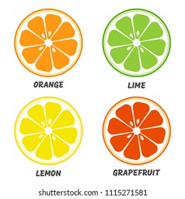 Set of citrus fruit icon. Orange, lime, lemon, grapefruit. Vector illustration