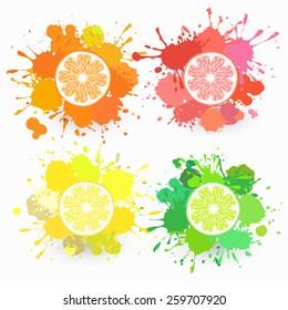 set of citrus fruits illustrations with juice splatters