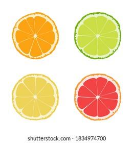 Set of citrus slices of lime, orange, grapefruit and lemon isolated on white background, Vector illustration