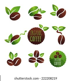 Set of coffee beans label designs organic various icons, green and brown coffee