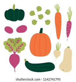 Set, collection of fresh autumn, fall vegetables. Pumpkin, zucchini, carrots, beet, brussels sprouts, potato, turnip. Vector vegetables in cartoon style.