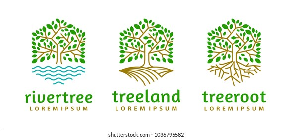 set collection hexagon tree logo icon