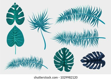 Set collection isolated. Tropical background vector palm leaf. Exotic summer green jungle tree. Hawaii plant pattern decoration design. Botanical tropic fashion element. Colorful travel banner.