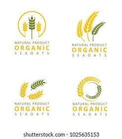Set collection wheat paddy logo