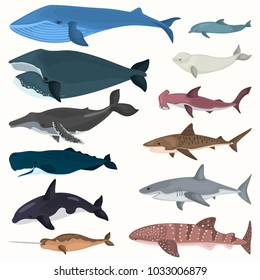 Set of color giant inhabitants of the sea depths icons