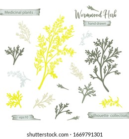 Set color hand drawn silhouette of wormwood, lives and flowers isolated on white background. Retro vintage graphic design. Botanical sketch drawing, engraving style. Vector illustration.
