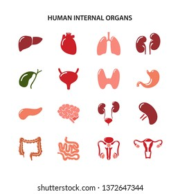 Set of color icons of human internal organs in flat style over white background. Vector illustration