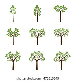 Set color Trees and Leafs. Vector Illustration.