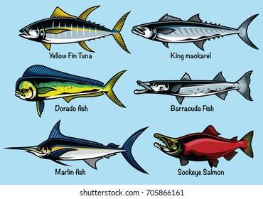 set of colored fish illustration