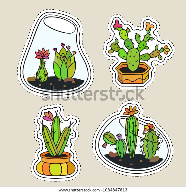 Set of colored funny cute cartoon cactus patch with black contour. Cactuses with flowers in terrariums and pots. Design elements for tag, label, sticker, icon, badge, t-shirt. Vector illustration.