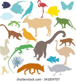 set of colored silhouettes of various animals