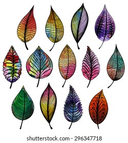Set of colorful abstract leaves. Vector isolated.