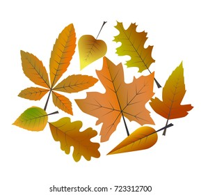Dry Leaves Images, Stock Photos & Vectors | Shutterstock
