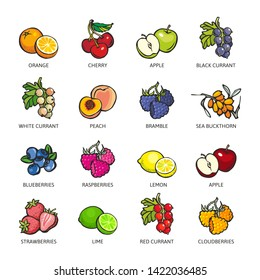 Set of colorful berries and fruits: Orange, Cherry, Apple, Black Currant, Peach, Bramble, Sea Buckthorn, Blueberry, Raspberry, Lemon, Lime, Strawberry, Red Currant, Cloudberry. Vector flat icon illust
