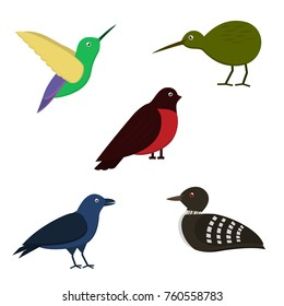 Set of colorful birds isolated on white background. Vector illustration.