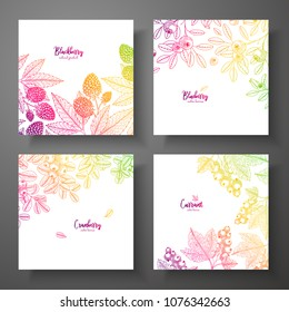 Set of colorful botanical cards with berries. Great design for natural and organic products. Vector vintage frame with blackberry, bluberry, cranberry, currant
