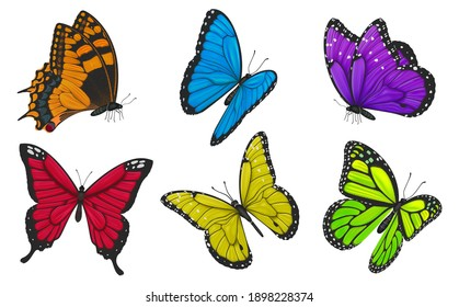 Set of colorful butterflies. Vector illustration.