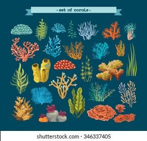 Set of colorful corals and algae on a blue background. Natural underwater vector illustration.