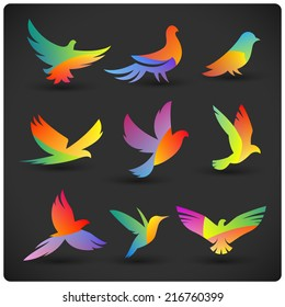 Set of colorful flying birds logo elements. Rainbow silhouettes on dark.