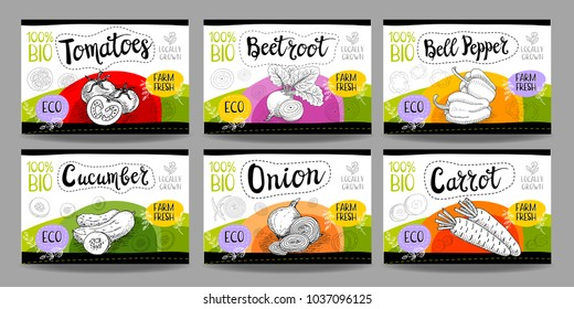 Set colorful food labels, sketch style, food vegetables cardboard texture. Carrot, onions, tomato, bell pepper, beet. Vegetables labels, eco bio food, organic product. Hand drawn vector