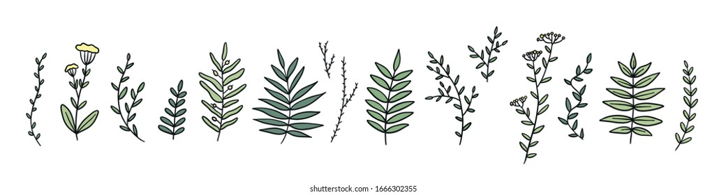 Set of colorful hand drawn line twigs. Stock vector illustration isolated.